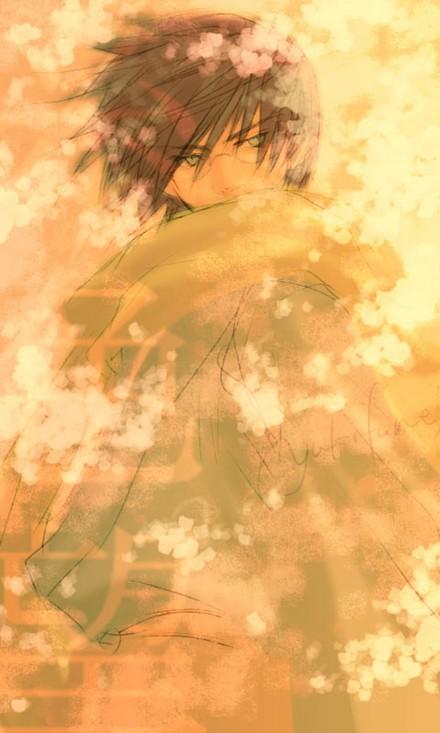http://celestialkitsune.files.wordpress.com/2009/06/summer-anime-2009.jpg
